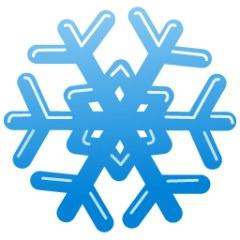 blue snowflake web.jpg